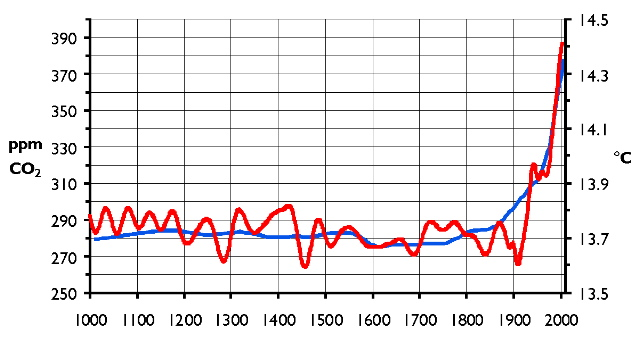 Global temperatures for the past millennium